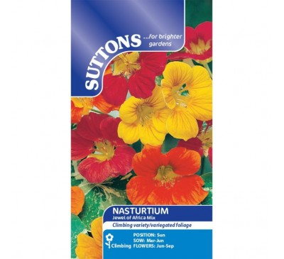 Nasturtium* Jewel Of Africa Mix (Giag)