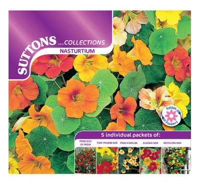 Nasturtium* Collection (Double Hook)
