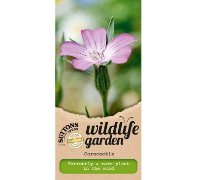 Wildlife Garden - Corncockle