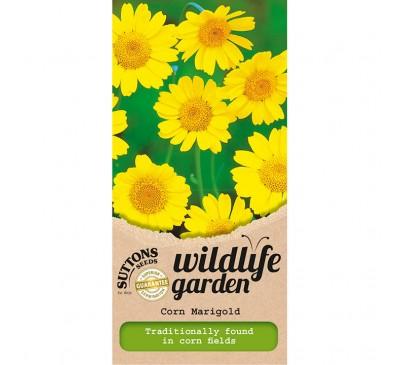 Corn Marigold - Wildlife