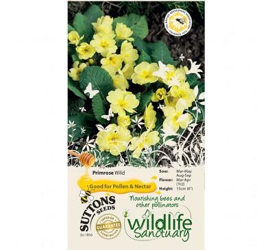 Wildlife Garden - Primrose