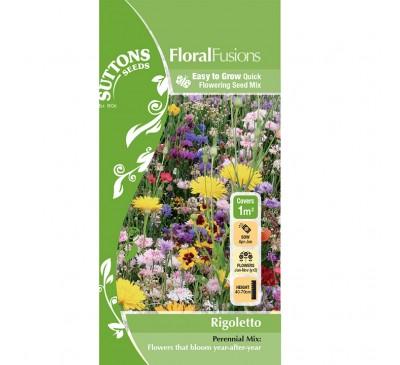 Flower Mixes Rigoletto 1Sqm