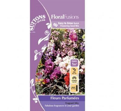 Flower Mix Fleurs Parfumees 1Sqm