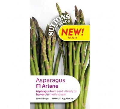 Asparagus - Ariane