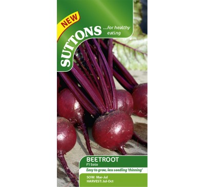 Beetroot Solo