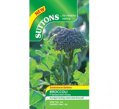 Broccoli F1 Bellaverde Sibsey