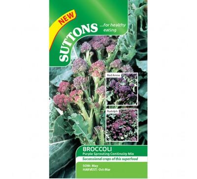 Broccoli Purple Sprouting Continunity