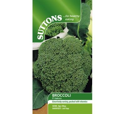 Broccoli Sakura F1