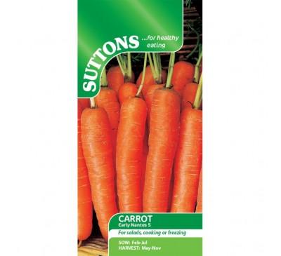Carrot Early Nantes 5