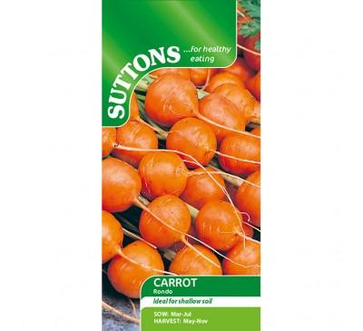 Carrot Rondo