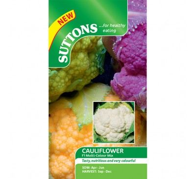 Cauliflower Multicolour Mix