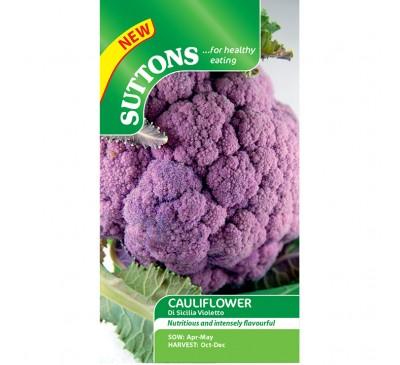 Cauliflower Di Sicilia Violetta