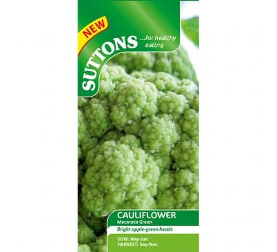 Cauliflower Macerata Green