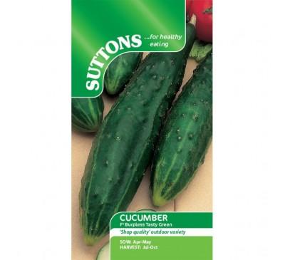 Cucumber Burpless Tasty Green F1