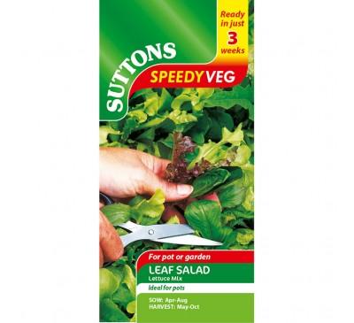 Leaf Salad Lettuce Mix
