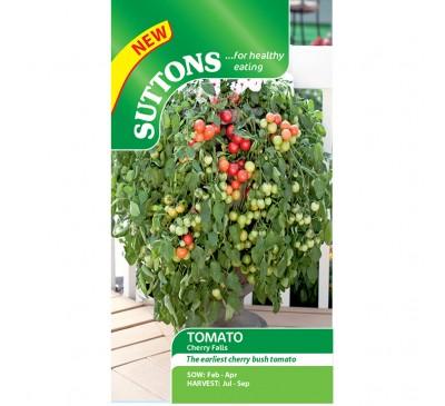 Tomato Summer Frolic