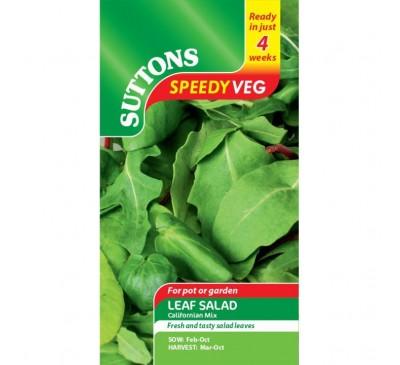 Leaf Salad Spicy Oriental Mix Speedy Veg