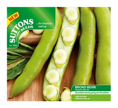 Bean Broad Bean Masterpiece Green Longpod