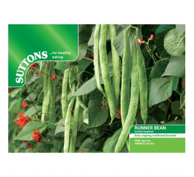 Bean Runner Bean St George