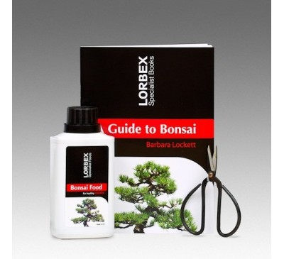 Lorbex Bonsai Care Kit