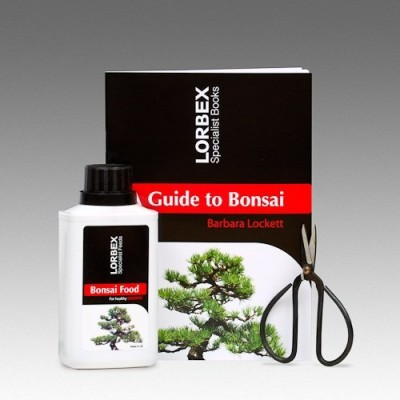 Lorbex Bonsai Care Kit