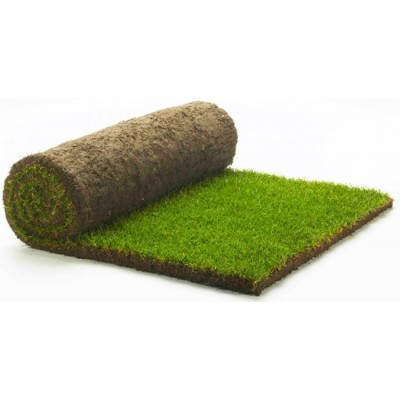 Baytree Original Turf