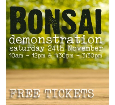 Bonsai Demonstration