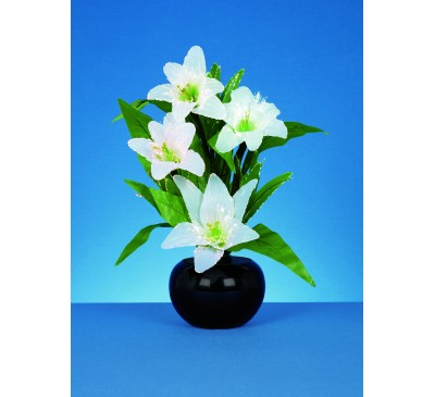 50cm Fibre Optic White Lilies  With White LEDs