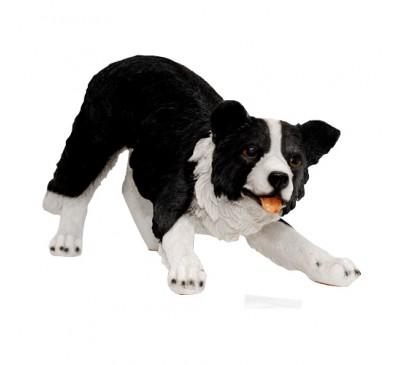Playful Sheepdog