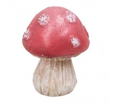 Red Sitting Toadstools