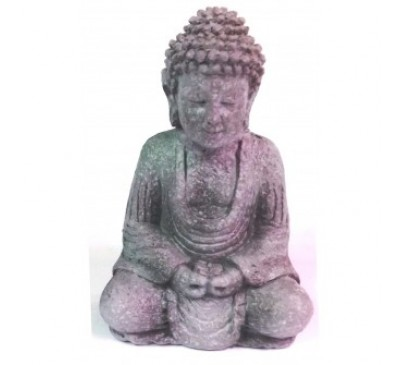 Temple Buddha Statue