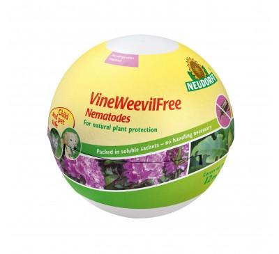 Vine Weevil Free - Nematodes