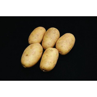Pentland Dell Seed Potatoes 2kg