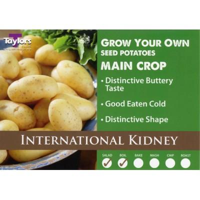 International Kidney 2 kg Seed Potatoes