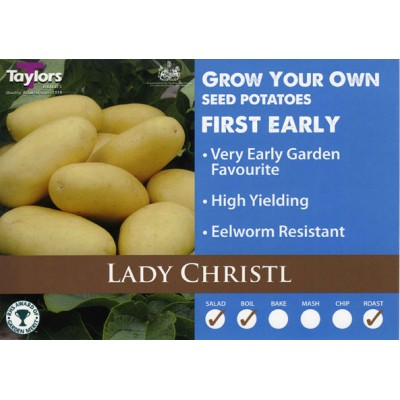 Lady Christl 2 kg Seed Potatoes