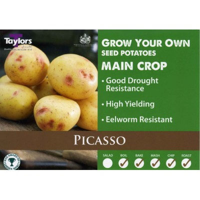Picasso 2 kg Seed Potatoes