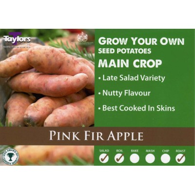 Pink Fir Apple 2 kg Seed Potatoes