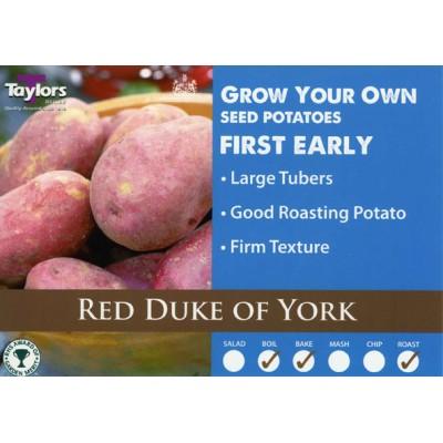 Red Duke Of York 2 kg Seed Potatoes