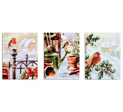 40x30cm Snowy Robin Scene Canvas with 6 LEDs 3 Designs