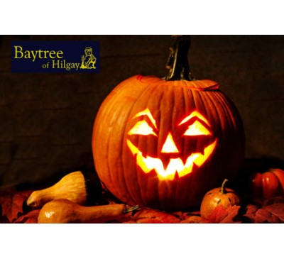 Spooky Pumpkin Carving at Baytree of Hilgay