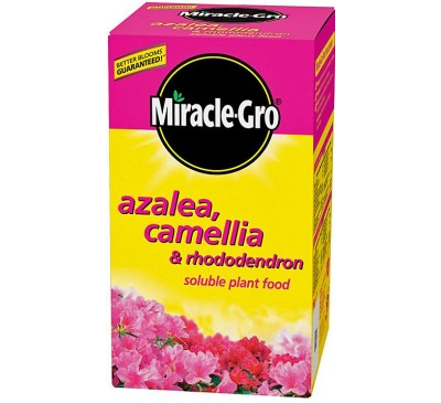 Miracle-Gro Azalea, Camellia & Rhododendron Soluble Plant Food 1kg