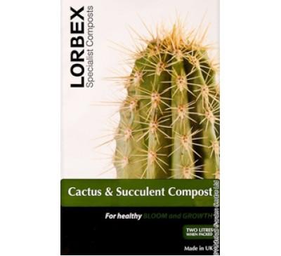 Cactus and Succulent Compost