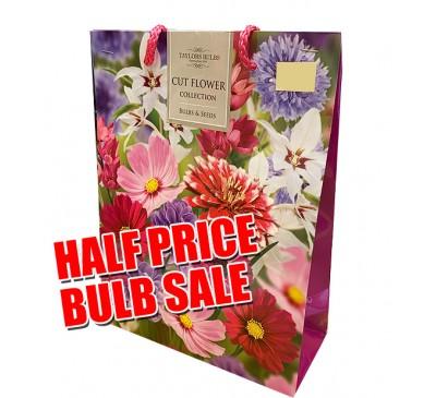 Taylors Bulbs Cut Flower Gift Pack SALE