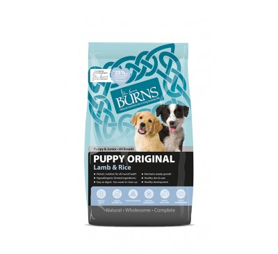 Burns Puppy Original Lamb & Rice 2kg