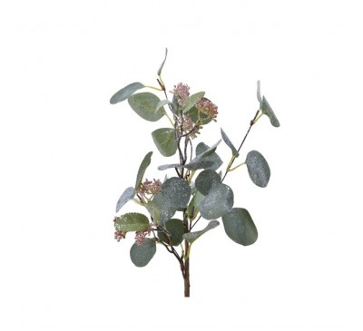 Eucalyptus Spray with Berries