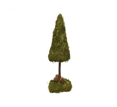 Mossed Mini Indoor Tree