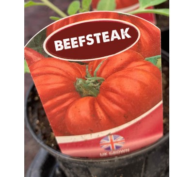 Tomato - Beefeaters