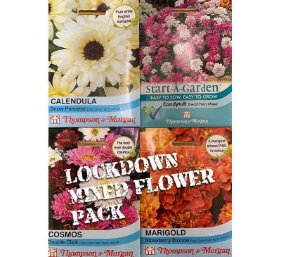 Lockdown Seed Pack Mixed Flower