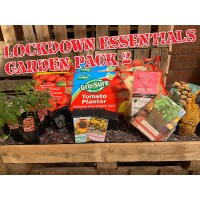 Lockdown Essentials Garden Pack 2 - Contains 2 Tomato Planters