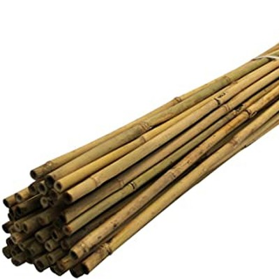 6ft Plant Canes 10 per pack